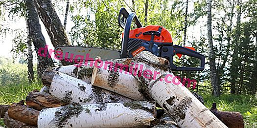 How to choose a good chainsaw for gardening: advice from competent experts