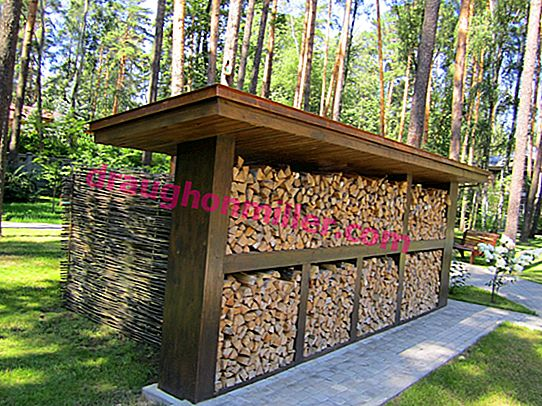 How to build a firewood in the country: we build a building for storing firewood